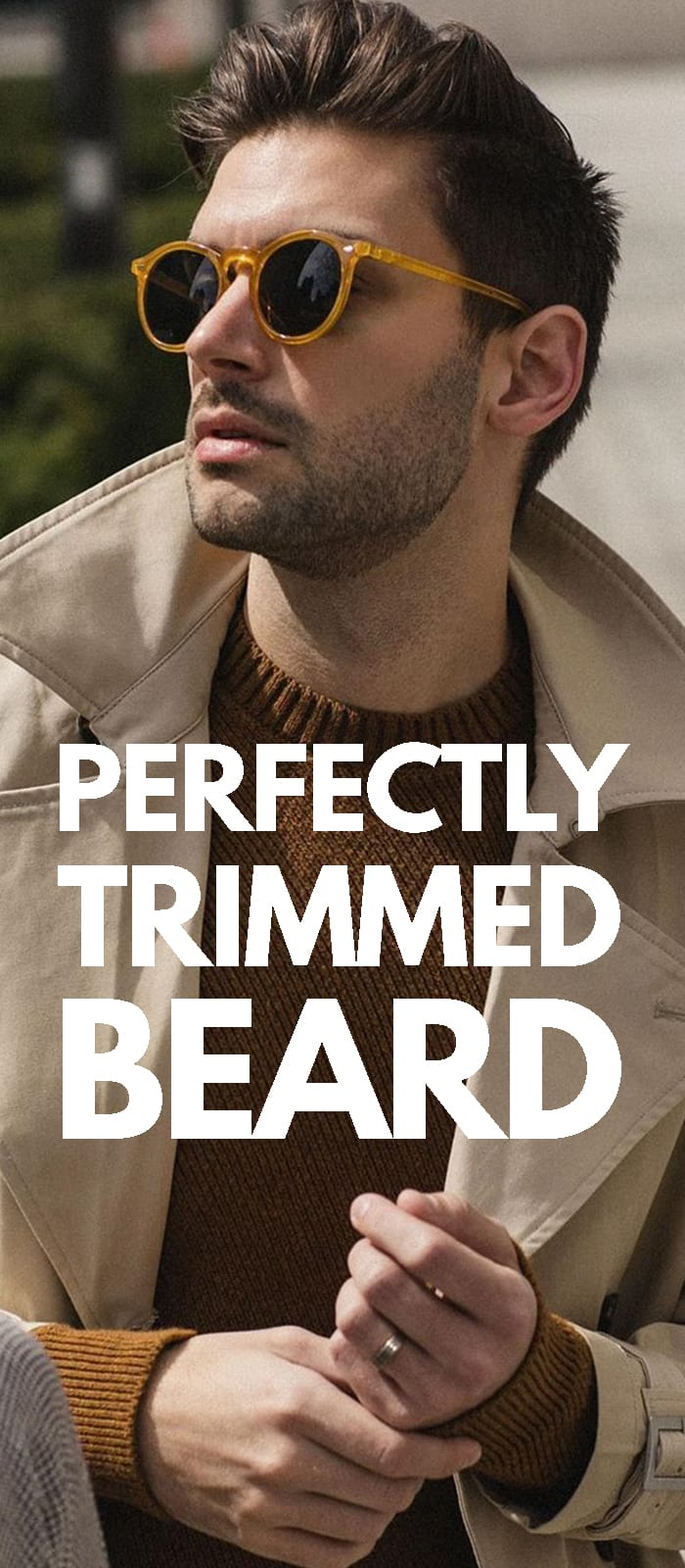 Beard Trimming Guide.
