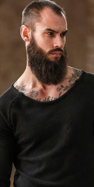 Garibaldi Beard -The Perfect Beard For Hunky Men