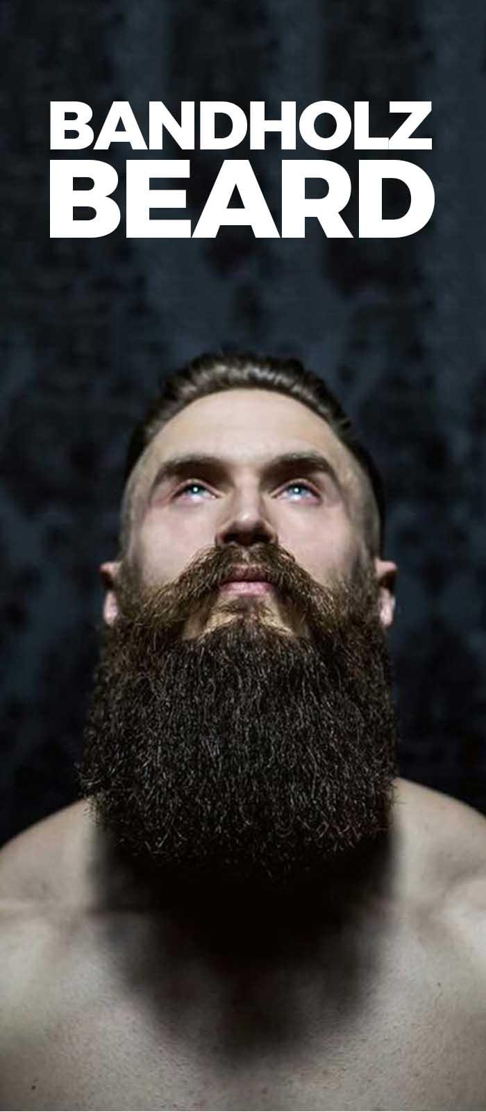 Female Magnet – Bandholz Beard