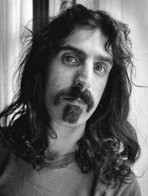 Zappa Beard style by frank zappa