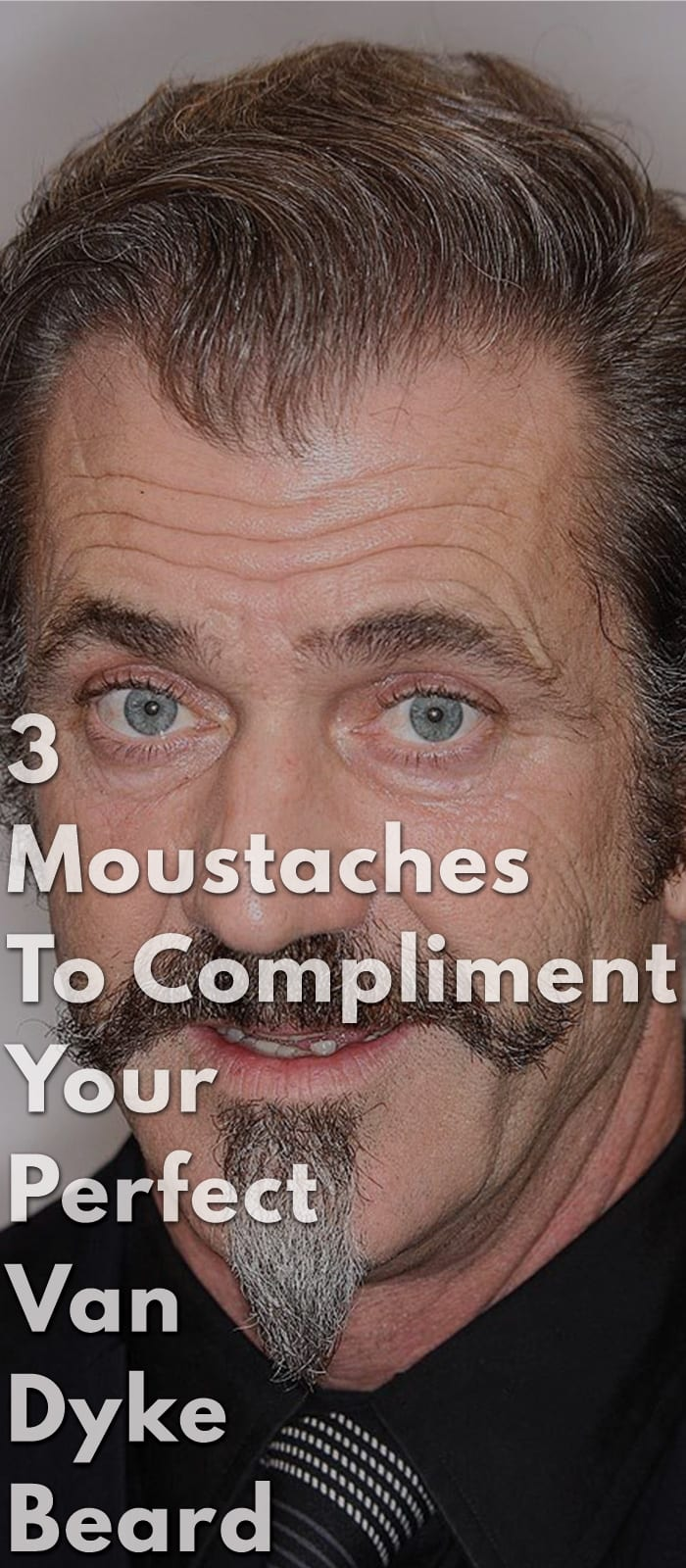 3-Moustaches-To-Compliment-Your-Perfect-Van-Dyke-Beard.