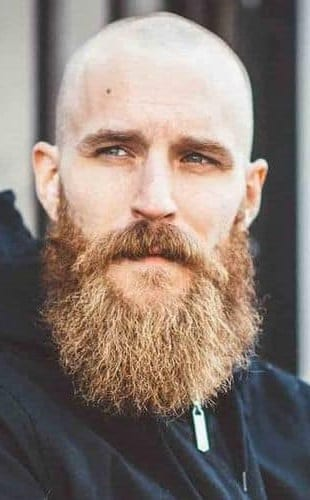 Garibaldi Style of beard for men