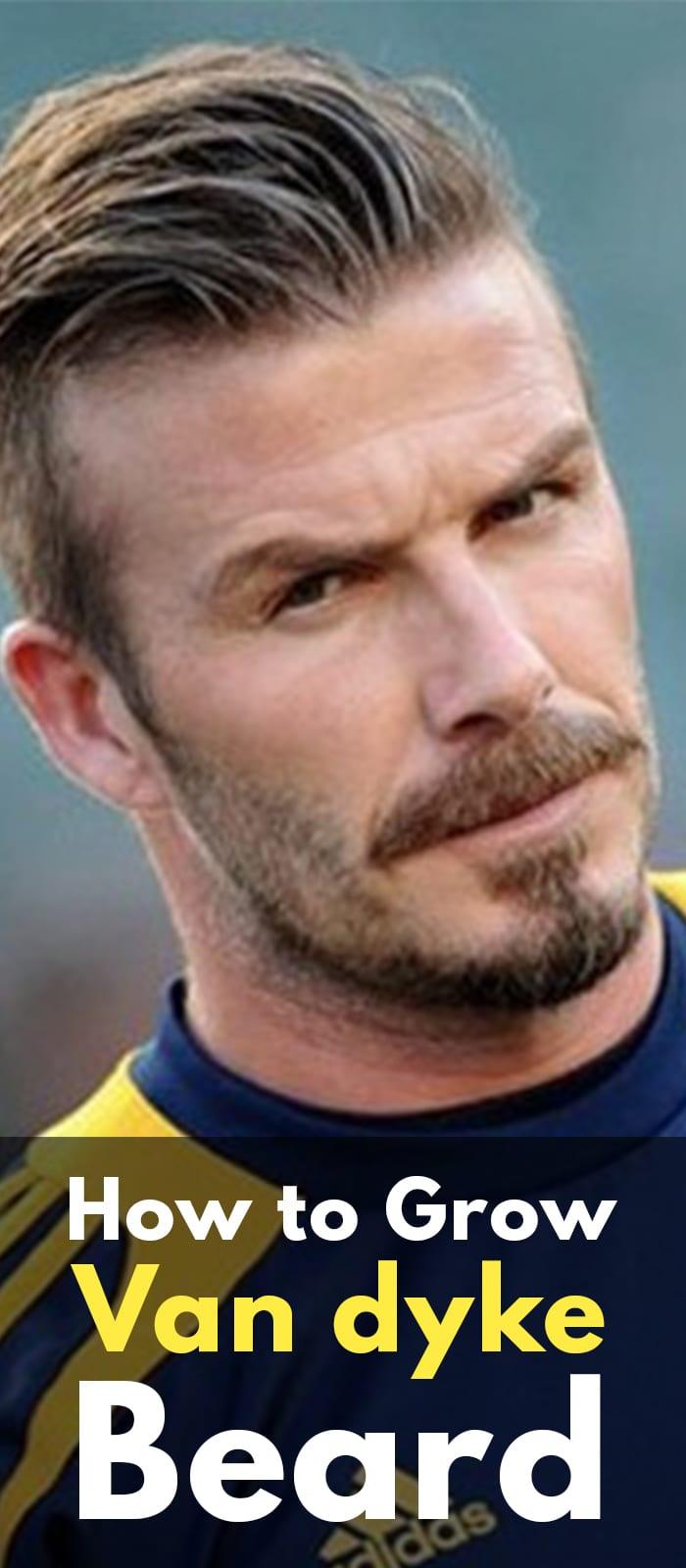 Perfect Van Dyke Beard