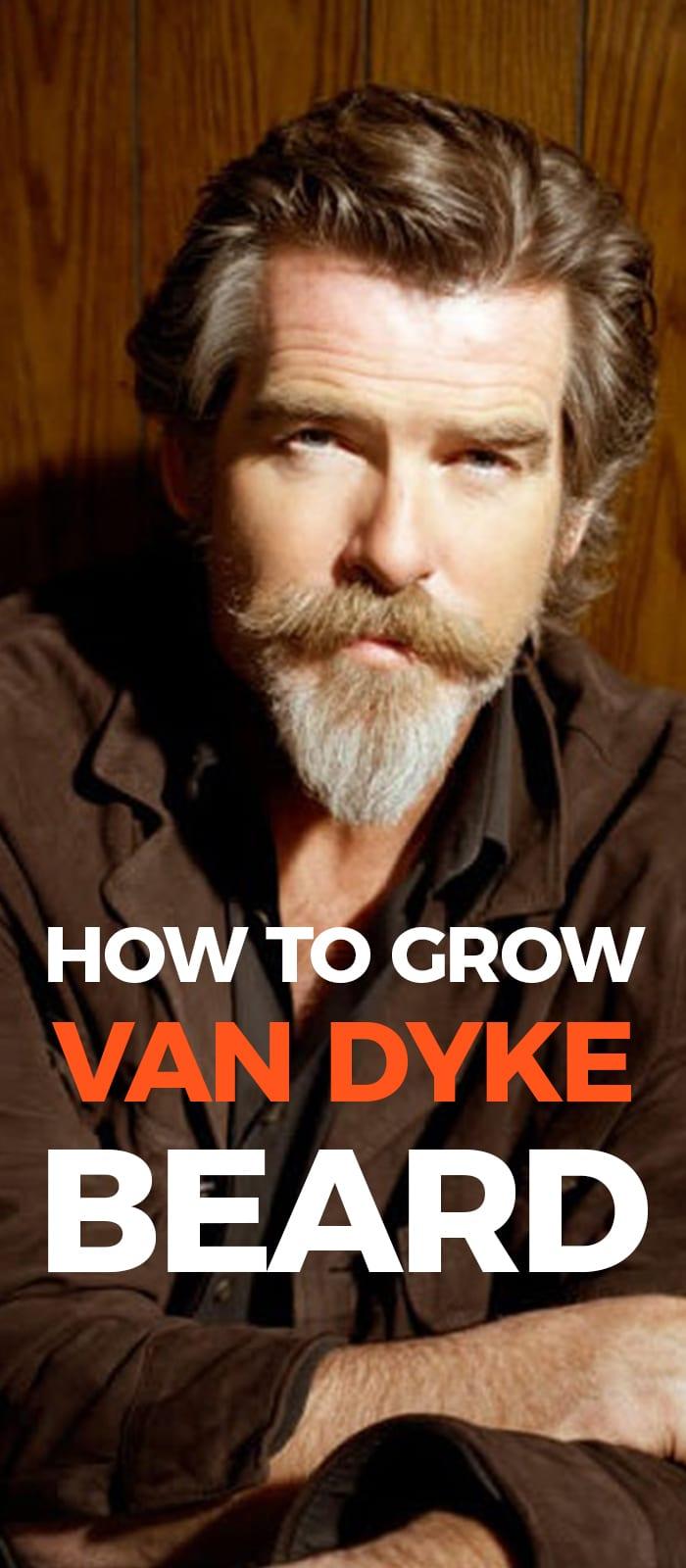 Perfect Van Dyke Beard.