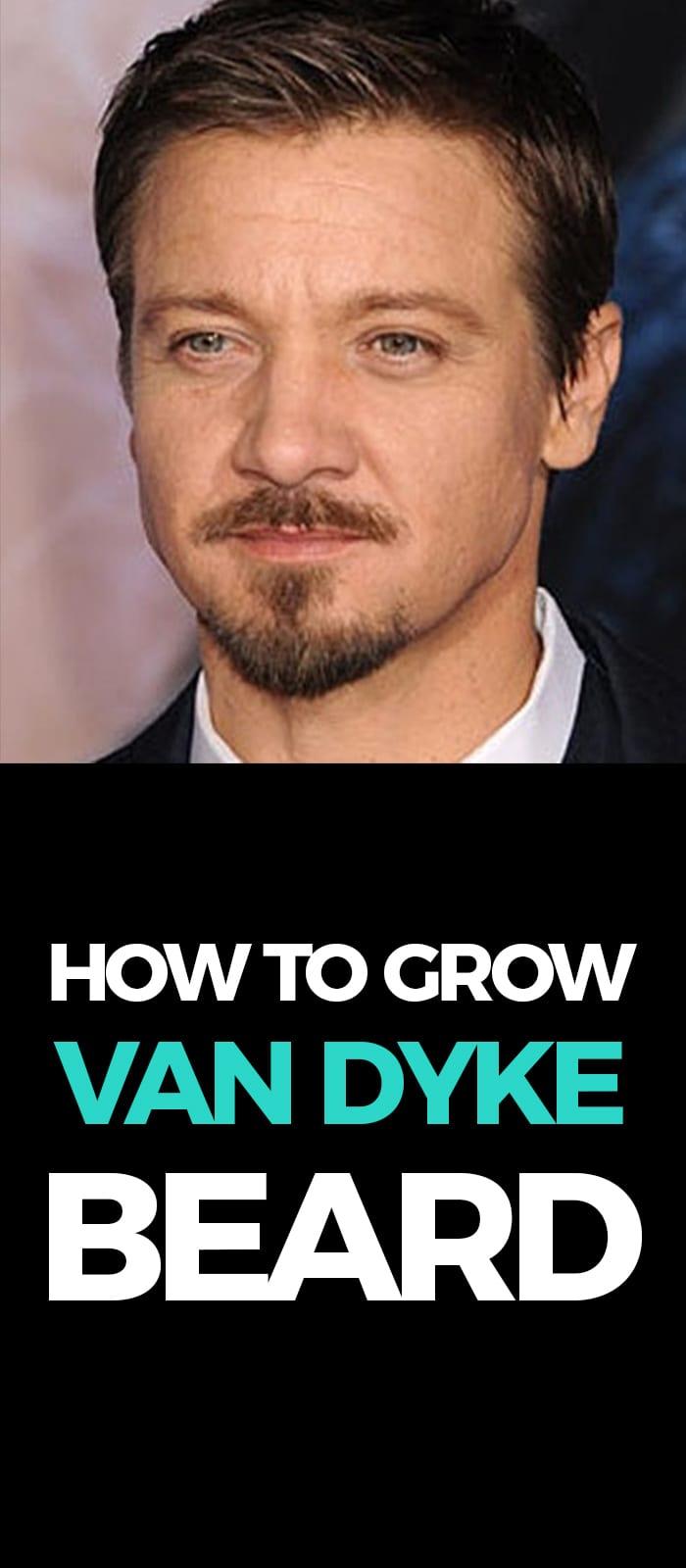 Perfect Van Dyke Beard!