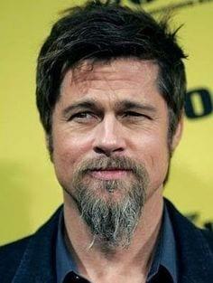 Van dyke brad pitt bearded men