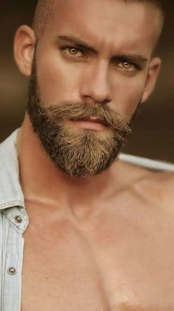 maintained beard